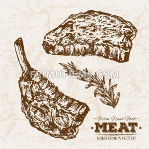 Hand drawn sketch steak and rosemary meat products set, farm fresh food, black and white vintage illustration - frimufilms.com
