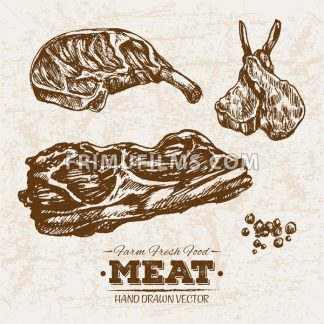 Hand drawn sketch steak meat products set, farm fresh food, black and white vintage illustration - frimufilms.com