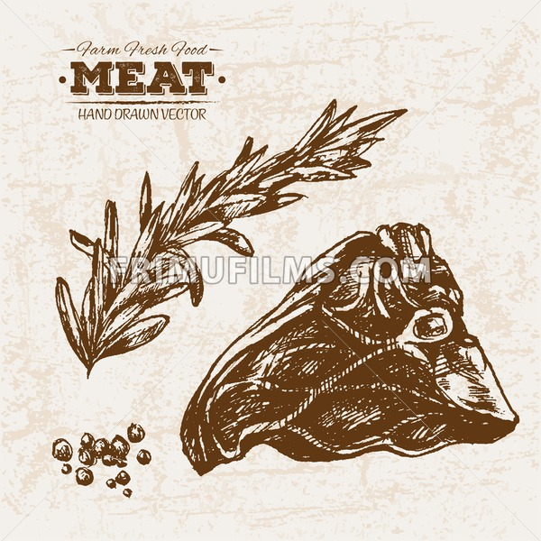 Hand drawn sketch steak meat with rosemary, farm fresh food, black and white vintage illustration - frimufilms.com