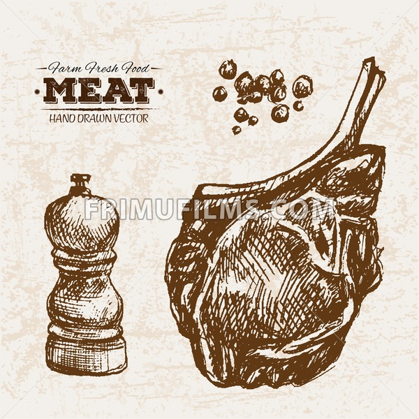 Hand drawn sketch steak with salt and pepper, farm fresh food, black and white vintage illustration - frimufilms.com