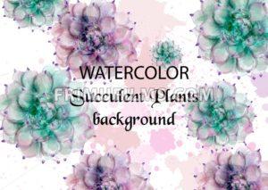 Succulent plants watercolor. Tropic palm Vector. Exotic summer background illustration - frimufilms.com