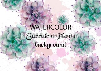 Succulent plants watercolor. Tropic palm Vector. Exotic summer background illustration - frimufilms.com
