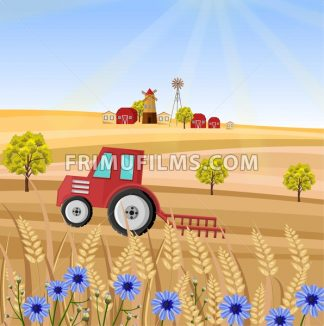 Tractor at the farm Vector illustration. Wheat field stalk. Provence harvest background - frimufilms.com
