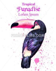 Tropical paradise parrot bird watercolor Vector. Paint splash background - frimufilms.com