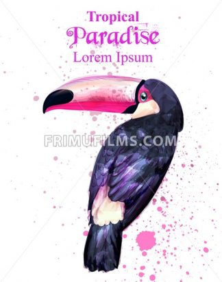 Tropical paradise parrot bird watercolor Vector. Paint splash background - frimufilms.com