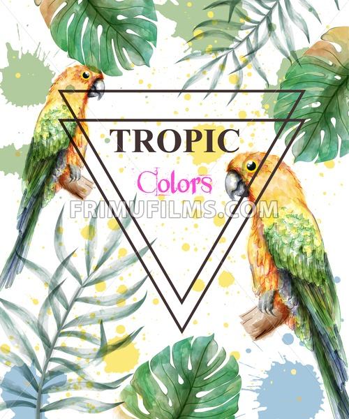 Tropical paradise with watercolor parrots and palm leaves card background Vector illustration - frimufilms.com