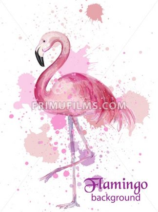 Vintage Flamingo watercolor card Vector. Hand made design decor - frimufilms.com