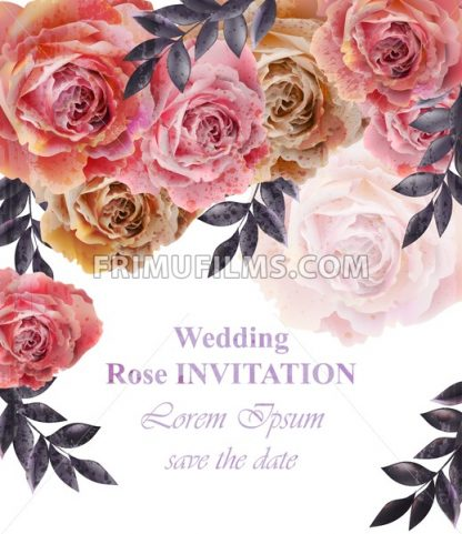 Vintage roses background Vector. Floral card retro decor - frimufilms.com