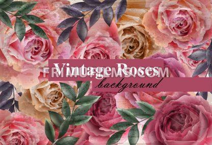 Vintage roses background Vector. Floral card retro decor. Wedding invitation or spring party card - frimufilms.com