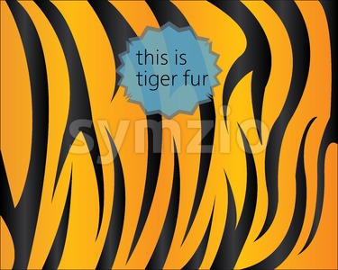 Big tiger fur texture, digital vector image Stock Vector