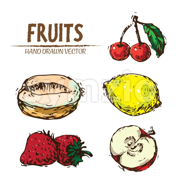 Digital vector color detailed fruit hand drawn retro illustration collection set. Thin artistic linear pencil outline. Vintage ink flat style, Stock Vector
