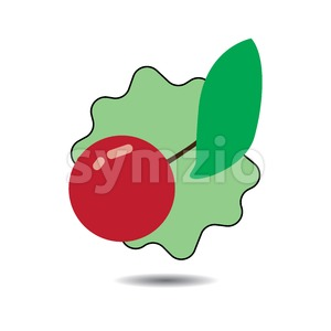 Flat red cherry icon with green leaf, with shadow over white background. Digital vector image Stock Vector