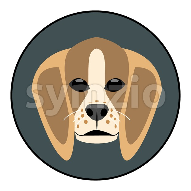 Digital vector beagle dog face, in dark silver circle, flat style Stock Vector