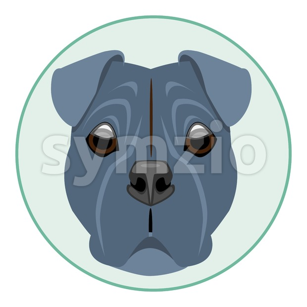 Digital vector boxer dog face, in green circle, flat style Stock Vector