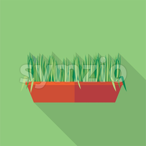 Digital vector green decorative grass in brown pot, flat style Stock Vector
