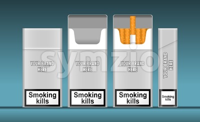 Digital vector silver cigarette pack mockup, front and lateral view, smoking kills, realistic flat style, isolated and ready for your design and logo Stock Vector