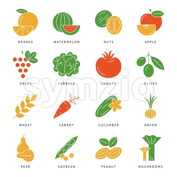 Digital vector green vegetable icons set infographics drawn simple line art, onion squash pear orange apple grape carrot wallnut peas watermelon Stock Vector