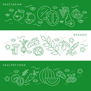 Digital vector green and white vegetable icons set infographics with drawn simple line art, onion squash pear orange apple grape carrot wallnut peas Stock Vector
