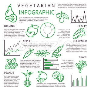 Digital black green vegetable icons set infographics drawn simple line art, onion squash pear orange apple grape carrot wallnut peas watermelon Stock Vector