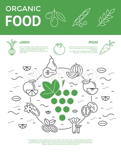 Digital vector green and black vegetable icons set infographics with drawn simple line art, onion squash pear orange apple grape carrot wallnut peas Stock Vector