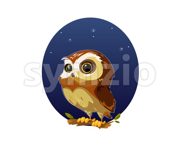 Digital vector funny comic cartoon owl bird with big eyes in the night sitting on a tree, hand drawn illustration, abstract realistic flat style Stock Vector