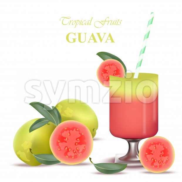 Smoothie Guava Vector exotic fruits cocktails fresh juicy tropic