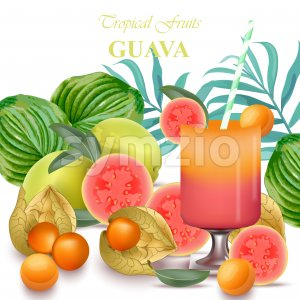 Smoothie Guava and goo fruits realistic Vector isolated on white background Stock Vector