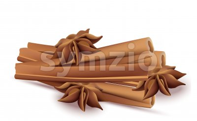 Cinnamon sticks and anise stars Vectos isolated on white background Stock Vector