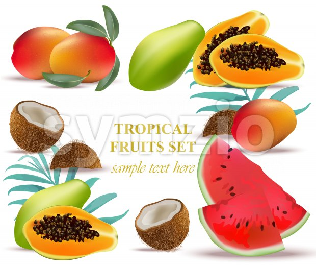 Fruits coconut, avocado, papaya, kiwi, pomegranate, fresh cocoa guava Collection set Vector illustration Stock Vector