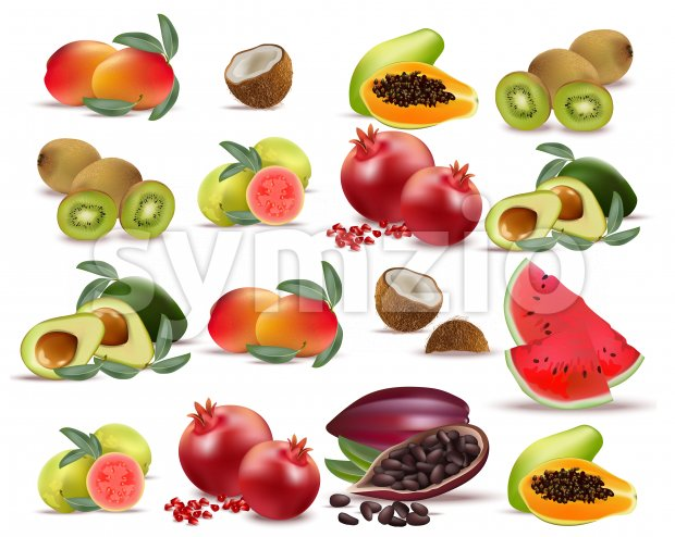 Fruits avocado, papaya, kiwi, pomegranate, fresh cocoa guava Collection set Vector illustration