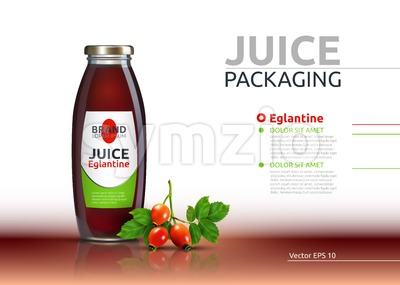 Dog rose, Rose hip or Eglantine drink. Juice realistic bottle Vector mock up. Brier Fruits drink glass bottle advertise templates. 3d detailed Stock Vector