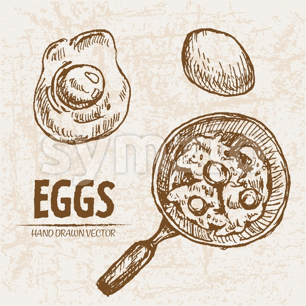 Digital vector detailed line art cooking eggs in frying pan hand drawn retro illustration collection set. Thin artistic pencil outline. ...