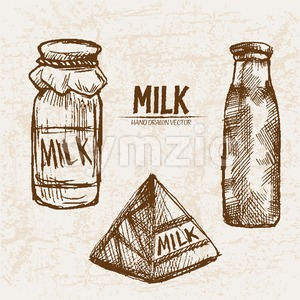 Digital vector detailed line art milk in different packages hand drawn retro illustration collection set. Thin artistic pencil outline. Vintage ink Stock Vector