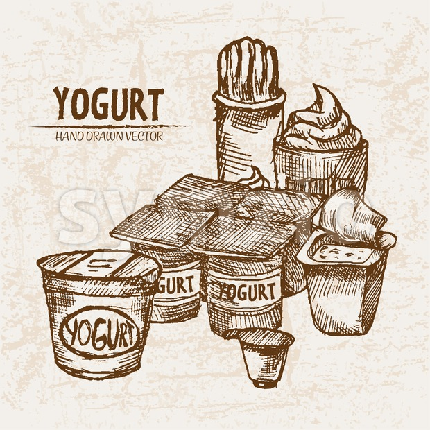 Digital vector detailed line art yogurt with whipped cream hand drawn retro illustration collection set. Thin artistic pencil outline. Vintage ...
