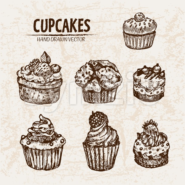 Digital vector detailed line art cupcakes with fruits hand drawn retro illustration collection set. Thin artistic pencil outline. Vintage ink flat, Stock Vector