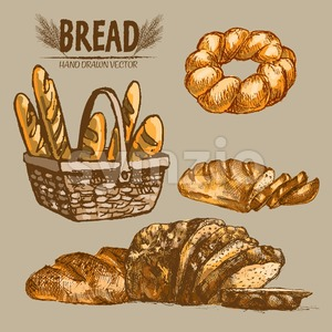 Digital color vector detailed line art baguettes in wooden basket, braided bread, slices hand drawn illustration set. Thin pencil artistic outline. Stock Vector
