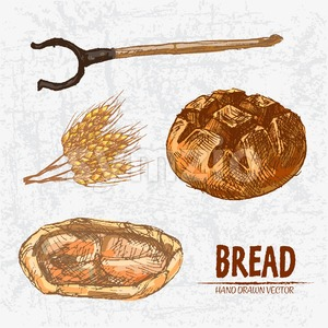 Digital color vector detailed line art golden loaf of round bread, khachapuri, oven fork and wheat hand drawn retro set. Thin pencil outline. Vintage Stock Vector