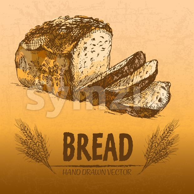 Digital color vector detailed line art golden loaf of rye bread, slices and wheat hand drawn illustration set. Thin artistic ...