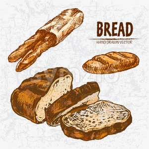 Digital color vector detailed line art golden loaves of white and rye bread, baguettes in organic bag, wheat hand drawn set. Thin outline. Vintage ink Stock Vector