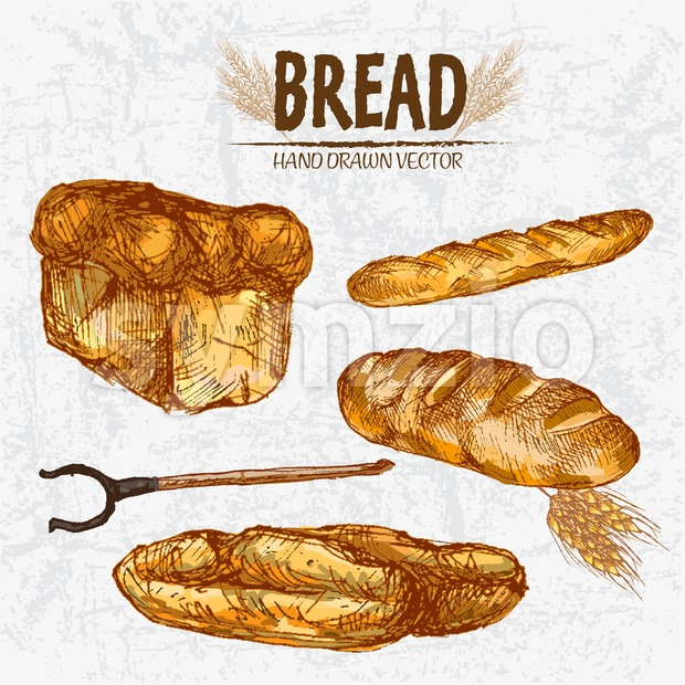 Digital color vector detailed line art golden loaves of white baton and baguette bread, wheat, oven fork hand drawn retro set. Thin outline. Vintage Stock Vector