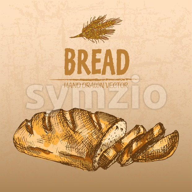Digital color vector detailed line art fresh golden loaf of white bread slices and wheat hand drawn illustration set. Thin ...