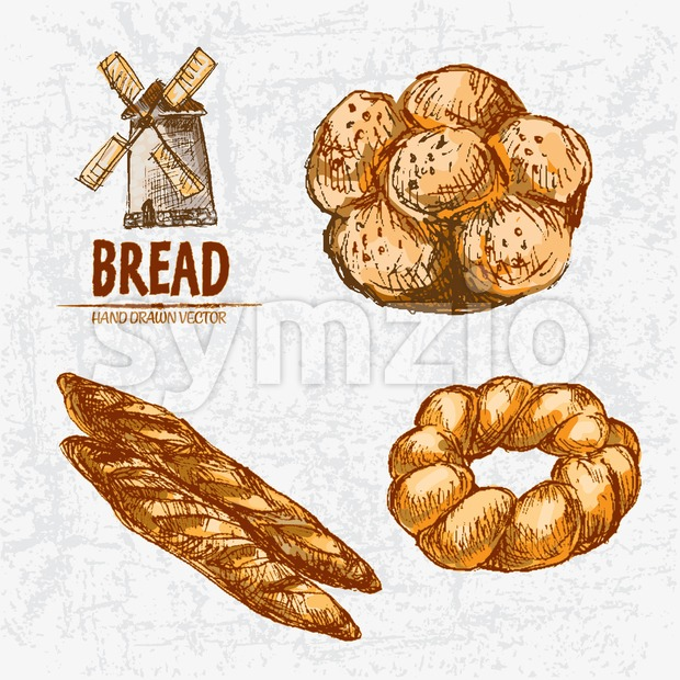 Digital color vector detailed line art golden loaves of baguettes and braided bread, buns with sesame, wheat hand drawn set. Thin outline. Vintage ink Stock Vector
