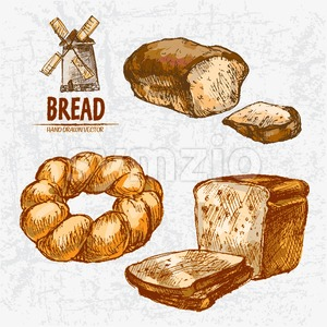 Digital color vector detailed line art golden loaves of rye, braided and toast bread, wheat hand drawn retro illustration set. Thin outline. Vintage Stock Vector