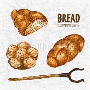 Digital color vector detailed line art golden loaves of braided bread, sliced cut, oven fork and buns with sesame hand drawn set outlined. Vintage ink Stock Vector