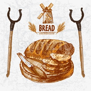 Digital color vector detailed line art golden loaf of baton bread sliced with wooden knife on chopping board, oven fork hand drawn set. Vintage ink Stock Vector