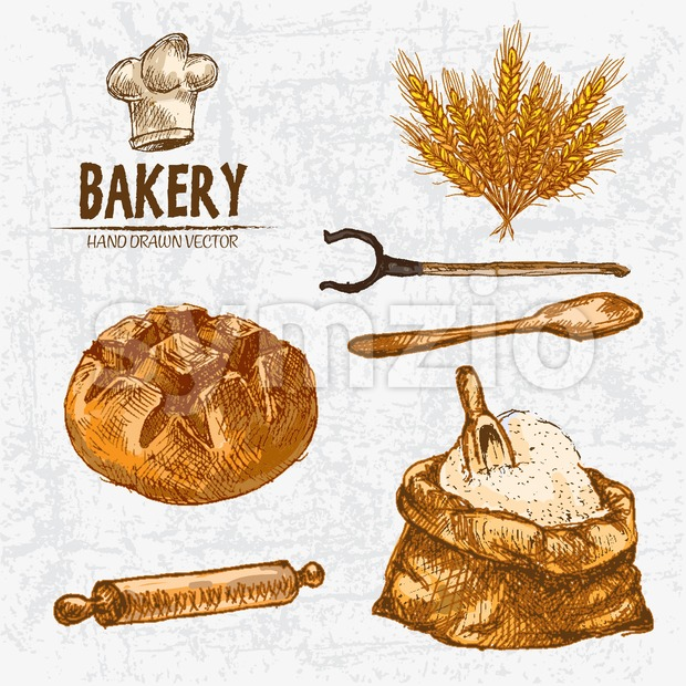 Digital color vector detailed line art golden loaf of round bread, wheat, oven fork, wooden paddle and rolling pin, flour sack with scoop hand drawn Stock Vector