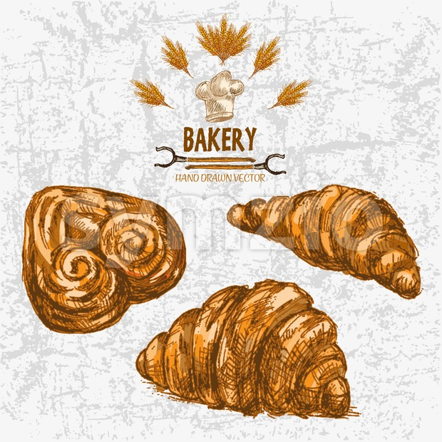 Digital color vector detailed line art golden croissants, pig ears, wheat, oven forks and chef hat hand drawn illustration set. Vintage ink flat, Stock Vector