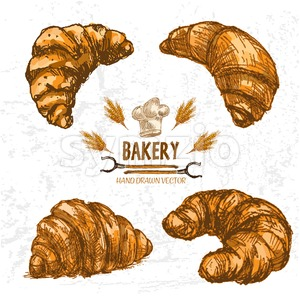 Digital color vector detailed line art golden croissants, wheat, oven forks and chef hat hand drawn illustration set. Thin outline. Vintage ink flat, Stock Vector