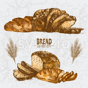 Digital color vector detailed line art golden loaves of rye and white bread, slices and wheat hand drawn set. Thin artistic pencil outline. Vintage Stock Vector