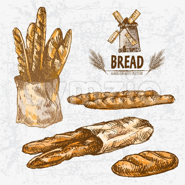 Digital color vector detailed line art golden loaves of white bread, baguettes in organic bag and wheat hand drawn set. Thin artistic outline. Vintage Stock Vector